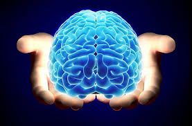 10 actividades para mantener un cerebro activo
