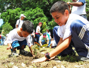 Educación ambiental para Xoxo