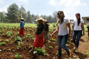 Legislaré para eficientar los programas de Sagarpa en beneficio del campo oaxaqueño: Gabriela Olvera