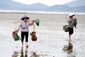 Salud de océanos, clave contra el hambre