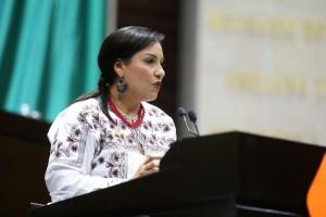 Obtener la patente de la blusa típica de Tlahui: Propone Karina Barón en tribuna