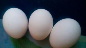 Desmienten que un huevo se venda en 40 pesos