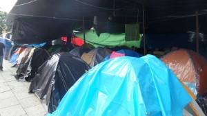 maestros-campamento