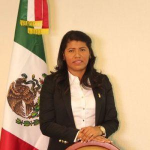 La diputada Nallely y su desprecio a los Triquis: Horacio Corro Espinosa