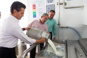 Liconsa reitera apoyo a ganaderos y compromiso de compra de leche nacional