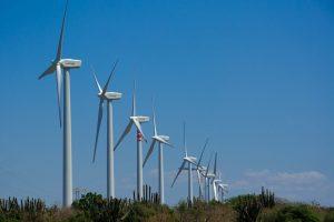 Energías verdes: Luis Octavio Murat