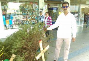 Concluye acopio de árboles naturales de navidad: José Luis Calvo Ziga