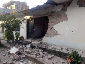 El sismo del 16 de Febrero: David Romero Villalobos