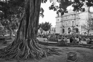 Oaxaca y el paso del tiempo: Luis Octavio Murat