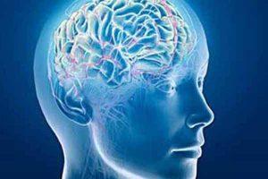 La salud física y mental del gobernante: Luis Octavio Murat