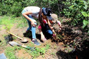 Se unen familias en favor de la reforestación en la capital