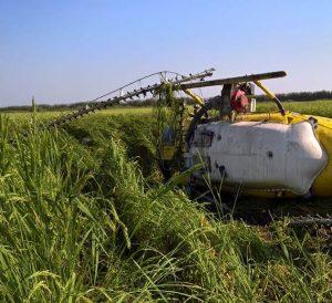 Cae helicóptero en Tuxtepec, no se registran lesionados: CEPCO
