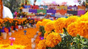 Días de muertos: Horacio Corro Espinosa
