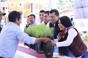 Asiste la Semaedeso a la conmemoración del Día del Árbol en San Mateo Río Hondo, Sierra Sur