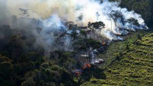 La tragedia de Bolsonaro y el Amazonas: *Francisco Ángel Maldonado Martínez